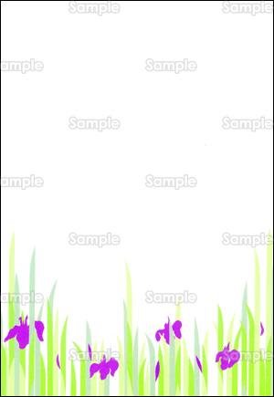 菖蒲の花のデザインテンプレート