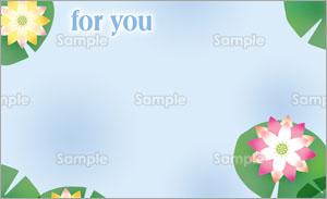 睡蓮のイラストのメッセージカード