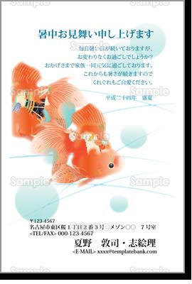 暑中見舞い/優雅に泳ぐ2匹の赤い金魚