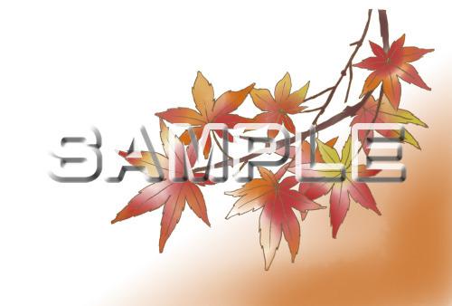 紅葉の塗り絵