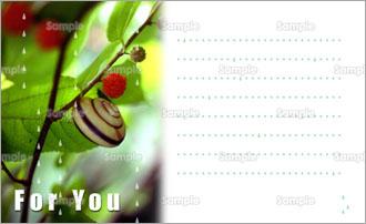 カタツムリのメッセージカード