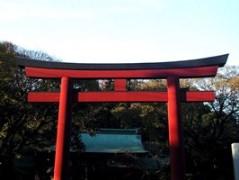 神社へ七五三詣り